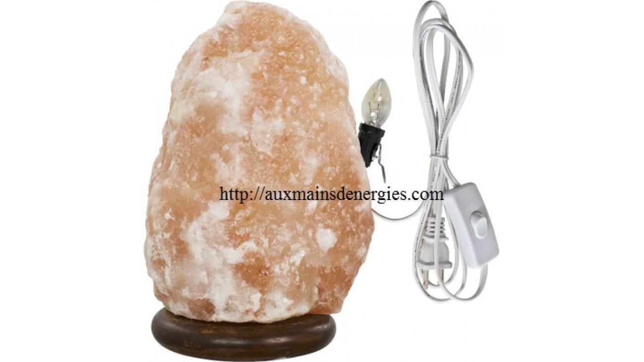 Himalayan Salt Lamps Evil : auxmainsdenergiescomboutiqueindexphproute=productproductkeyword=35801product-id=408
