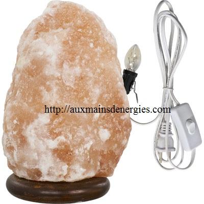 Sublime lampe de sel Himalaya, inclus cordon électrique et lumière 7W