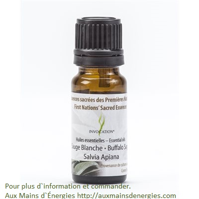 Sauge Blanche-10ml